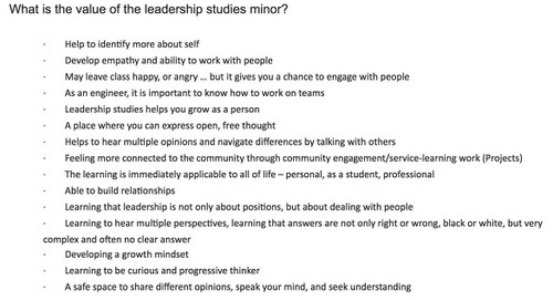 Valueofleadershipminor